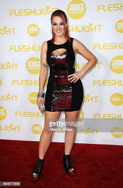 Adult film actress Siri arrives for the 2014 XBIZ Awards held at The Hyatt Regency Century Plaza Hotel on January 24 2014 in Century City California