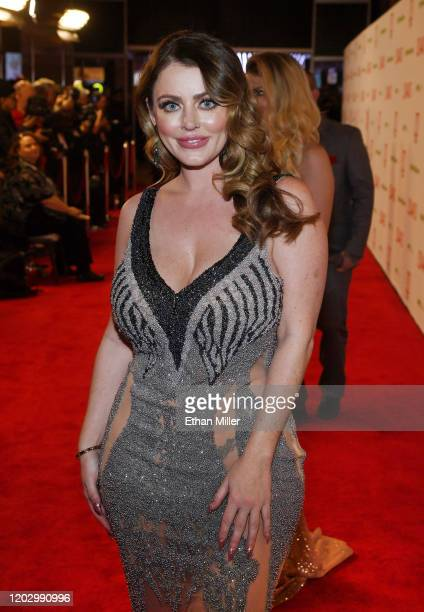 Adult film actress Sophie Dee attends the 2020 Adult Video News Awards at The Joint inside the Hard Rock Hotel Casino on January 25 2020 in Las Vegas...