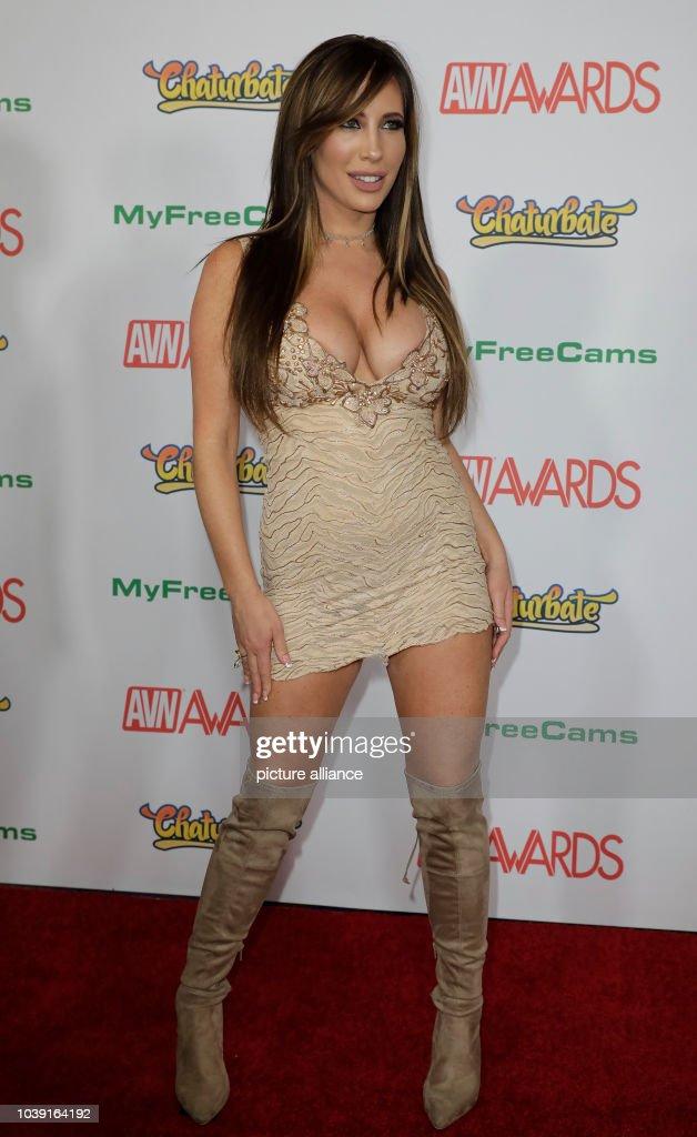 2017 Adult Video News Awards