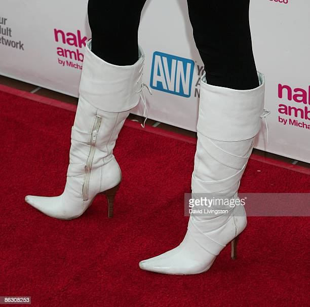 Adult film actress/AVN correspondent Michelle Maylene attends the premiere of the documentary Naked Ambition An R Rated Look at an X Rated Industry...