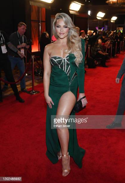Adult film actress/director Alexis Texas attends the 2020 Adult Video News Awards at The Joint inside the Hard Rock Hotel & Casino on January 25,...