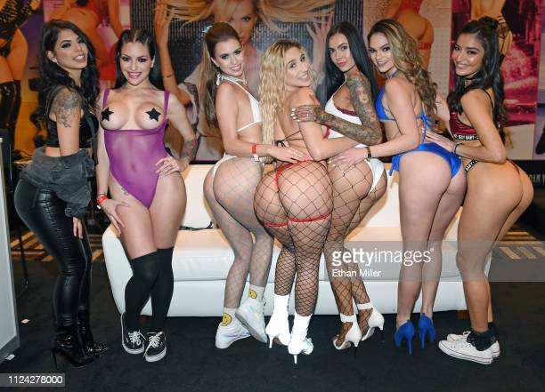Adult film actresses Gina Valentina, Kissa Sins, Jill Kassidy, Abella Danger, Marley Brinx, Athena Faris and Emily Willis pose at the Jules Jordan...