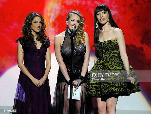 Adult film actresses Jenna Haze, Kagney Linn Karter and Dana DeArmond present an award during the 29th annual Adult Video News Awards Show at The...