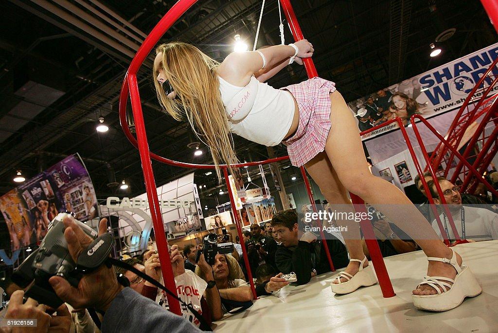 2005 avn adult entertainment expo
