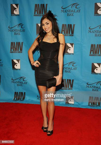 Adult Film Star Michelle Maylene arrives on the red carpet at the 2009 AVN Awards Show at the Sands Expo Convention Center on January 10 2009 in Las...