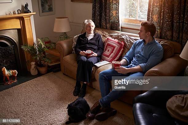 Adult Grandson Visiting Grandmother At Home