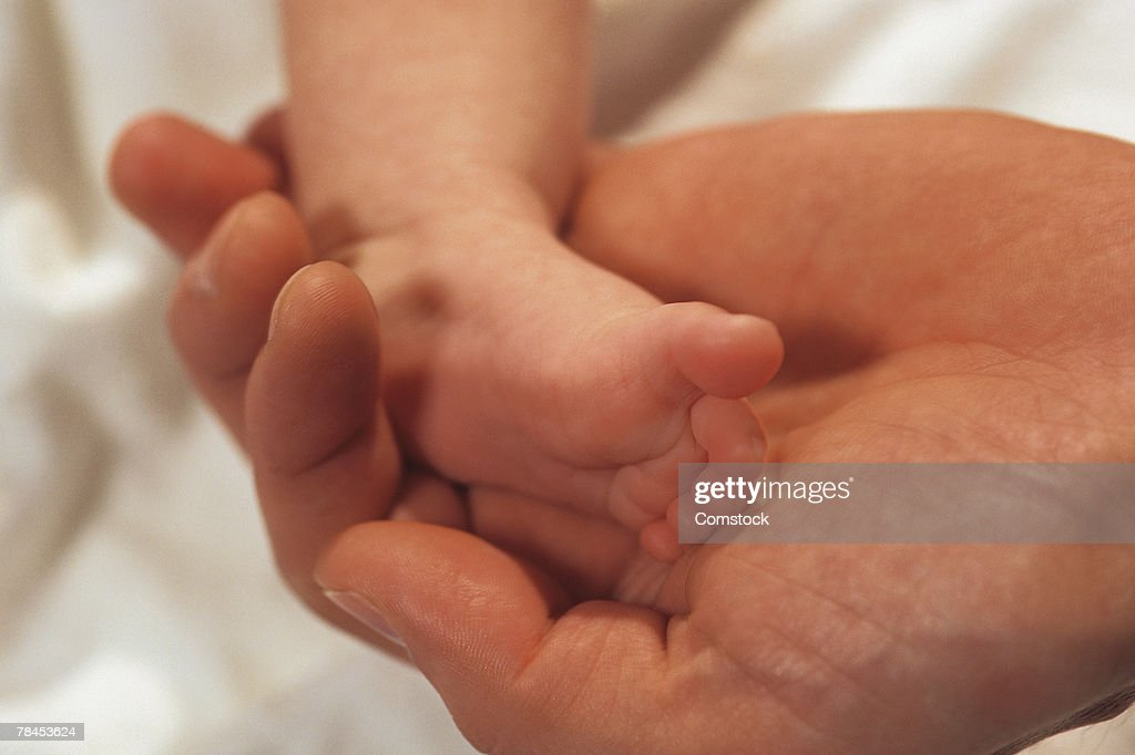 Adult hand holding baby's foot : Stockfoto