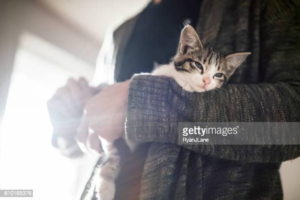 Adult Holding Kitten