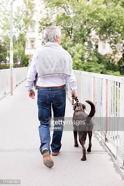 Adult man walking a labrador