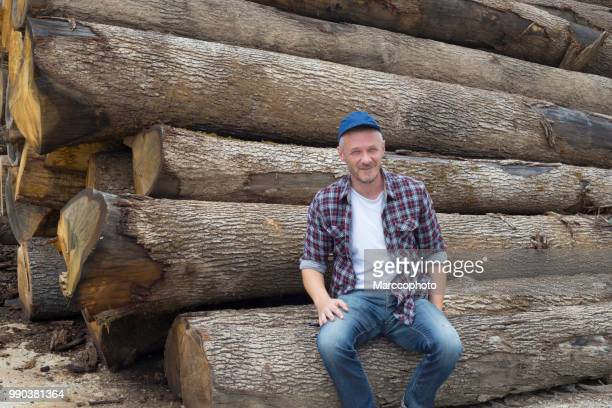 Adult satisfied lumberjack sitting on timber in front of large pile of timber