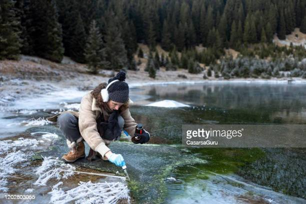 adult woman biologist taking a sample of water in frozen mountain lake - stock photo - wilderness area stock pictures, royalty-free photos & images