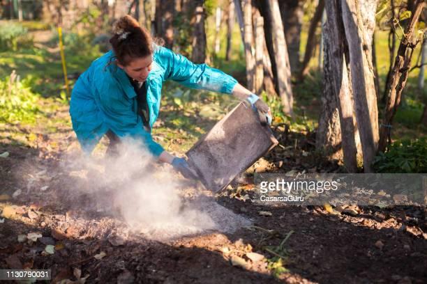 大人の女性は裏庭の薪ストーブ灰の容器を空ける - 灰 ストックフォトと画像