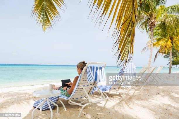 adult woman executive using laptop on the beach - west indies stock pictures, royalty-free photos & images