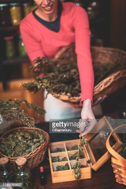 adult woman showing dry cannabis plant branch - cannabis store stock pictures, royalty-free photos & images