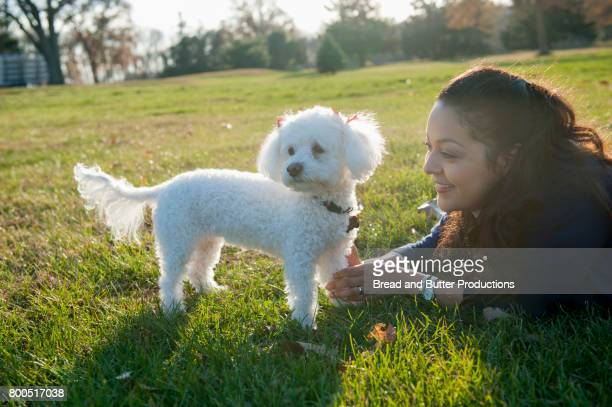 adult woman with mini poodle dog - miniature poodle stock photos and pictures