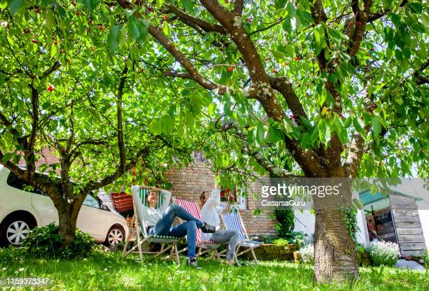 adult women relaxing in backyard and picking cherries - fruit tree stock pictures, royalty-free photos & images