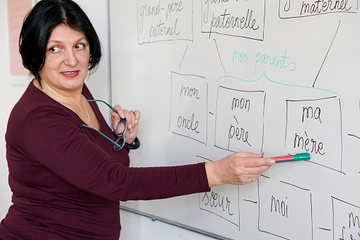 Adults learning a French language 904157600