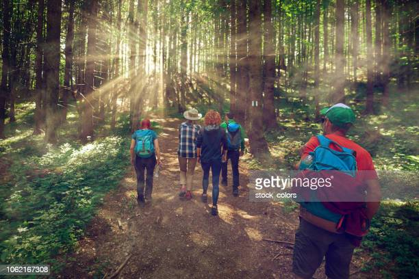 adventure with friends - eco tourism stock pictures, royalty-free photos & images