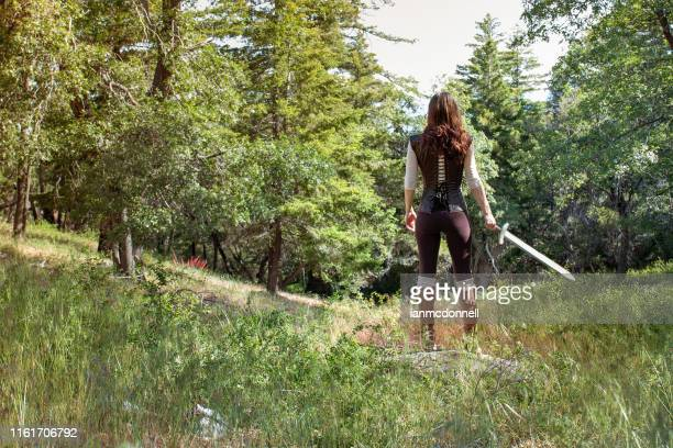 adventurer - sword stock pictures, royalty-free photos & images