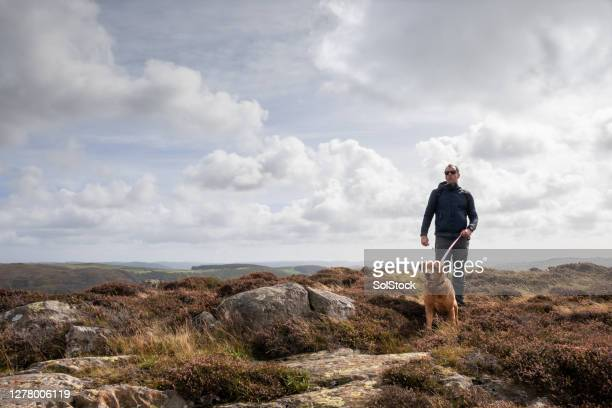 adventures in the lake district - pet lead stock pictures, royalty-free photos & images