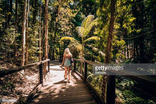 Adventuring Fraser Island