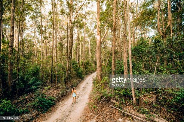adventuring on fraser island - international landmark stock pictures, royalty-free photos & images