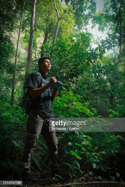 adventurous men exploring the forest - biologist stock pictures, royalty-free photos & images