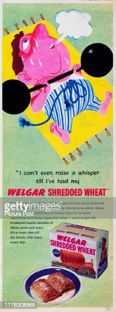 Advertisement for Welgar Shredded Wheat breakfast cereal showing a man trying to lift a dumbbell Original Publication Picture Post Ad Vol 68 No 11 P...