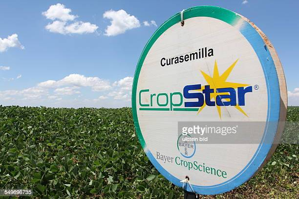 Advertising for the Cropstar insecticide from Bayer cropscience
