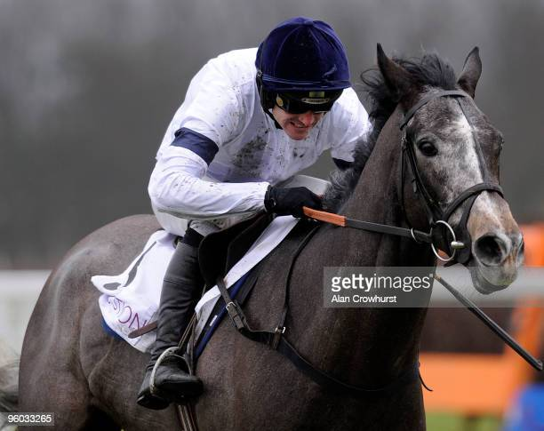 Advisor ridden by jockey Ruby Walsh clear the last to win The Execution Ltd Juvenile Novices' Hurdle Race run at Ascot racecourse on January 23 2010...