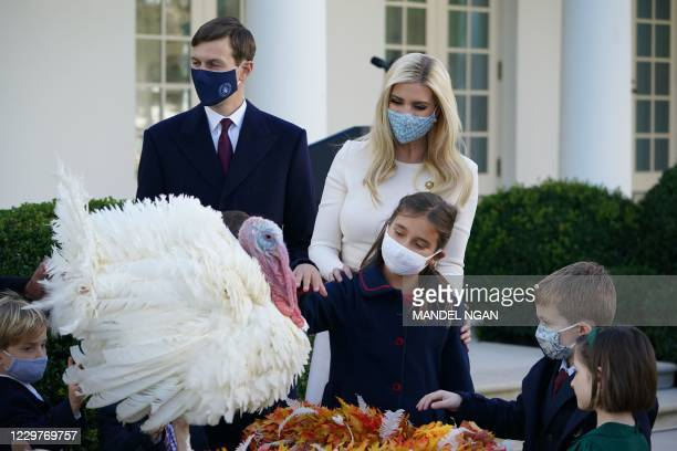"""Advisors to the president Ivanka Trump , Jared Kushner and their daughter Arabella look at """"Corn"""" the Thanksgiving turkey just pardoned by US..."""