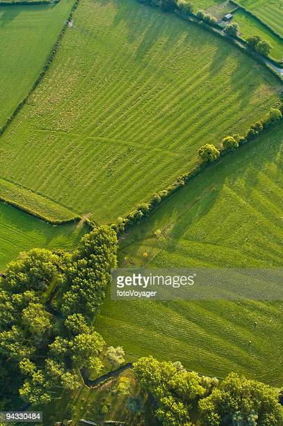 Aerial abstract, woodland and pasture