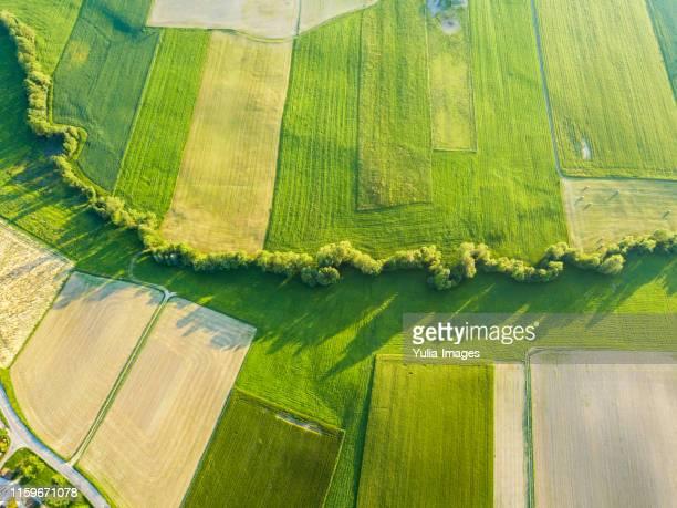 aerial agricultural landscape of green crops - feld stock-fotos und bilder