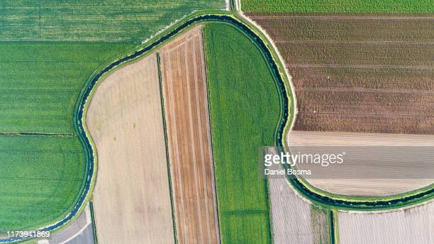 aerial agricultural landscape with patchwork of assorted crops in adjacent fields - prosperity stockfoto's en -beelden