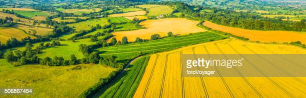 Aerial agricultural panorama over farm fields green pasture golden crops