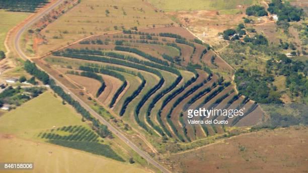 aerial contour lines - sem fim... valéria del cueto stock pictures, royalty-free photos & images