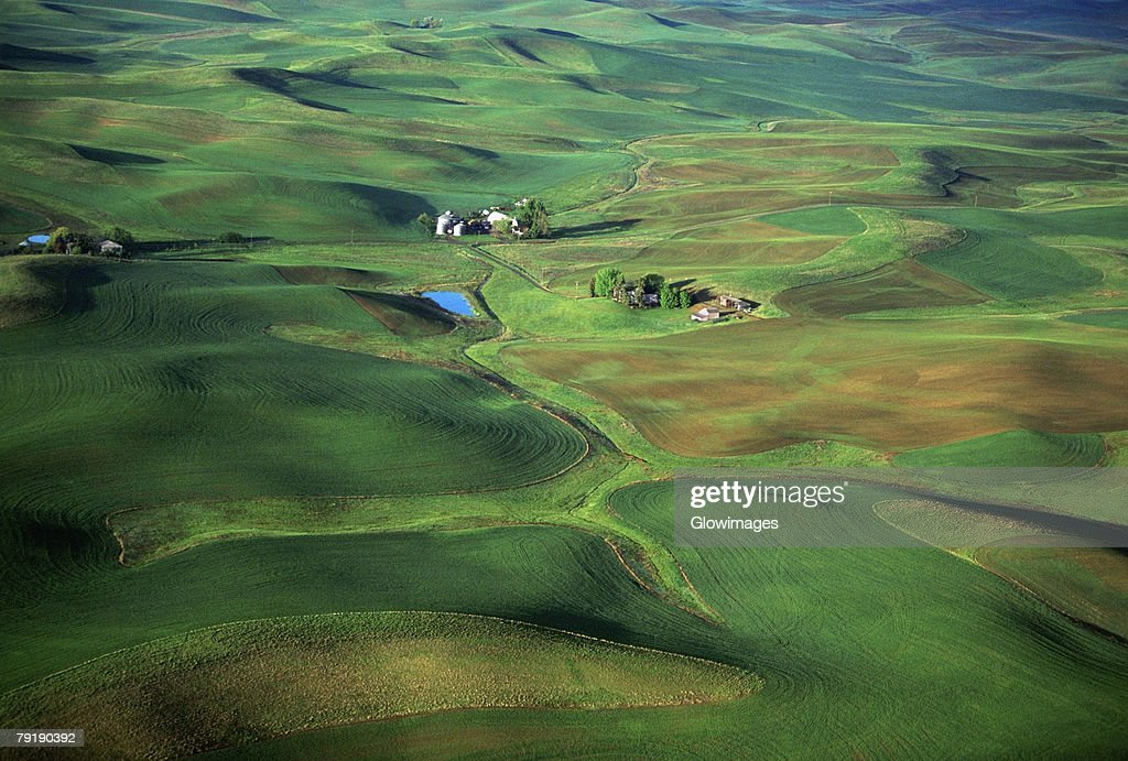 Aerial, contour plowing : Stock Photo