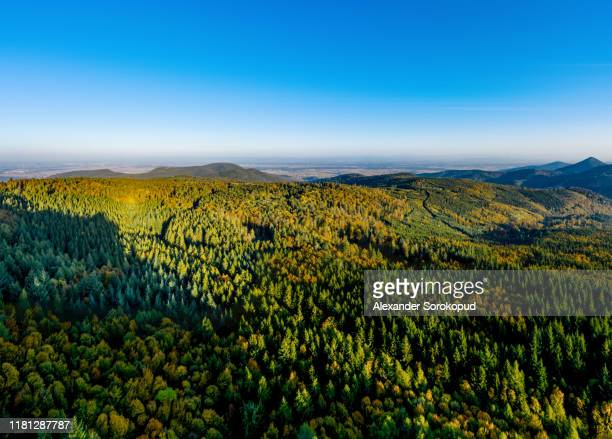 aerial drone panoramic view of autumnal mountains in alsace. france. - lorraine stock pictures, royalty-free photos & images