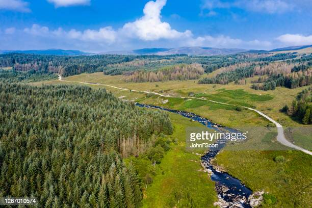 aerial drone view of a scottish river and dirt road in an area of forest in east ayrshire, west scotland - johnfscott stock pictures, royalty-free photos & images