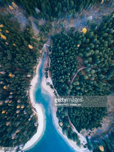 Aerial drone view of forest and alpine lake