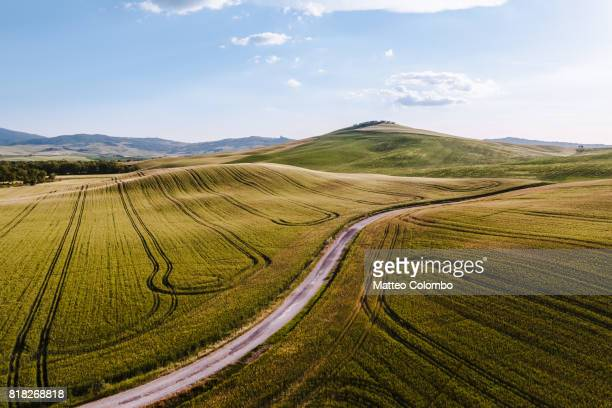 Aerial drone view of wheat fields, Val d'Orcia, Tuscany, Italy