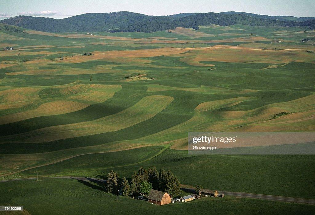 Aerial, farm country  : Foto de stock