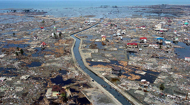 stories of tsunami The 2004 indian ocean tsunami killed 226,000 people - and touched billions more through iconic imagery but from the tragedy came stories of.