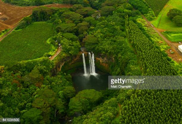 aerial from helicopter of lush rainforest and waterfalls on kauai, hawaii - hawaiian waterfalls stock pictures, royalty-free photos & images