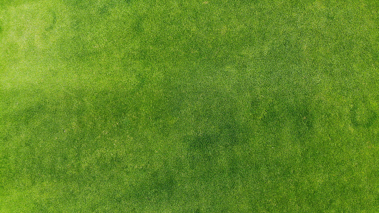 Aerial. Green grass texture background. Top view from drone. 1160552245