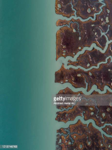 aerial image above marshlands at the edge of a river, cadiz, spain - andalucia fotografías e imágenes de stock