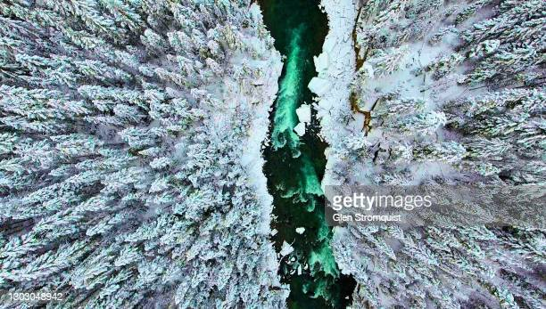 aerial image fraser river headwaters in the winter - canada stock pictures, royalty-free photos & images