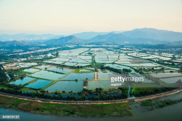 Aerial image , Hong Kong