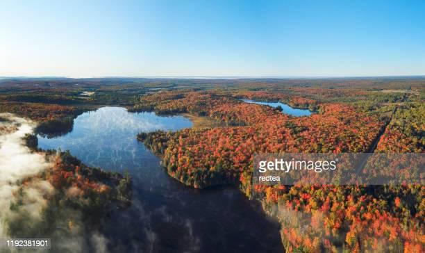 aerial lake at sunrise, ontario - ontario canada foto e immagini stock