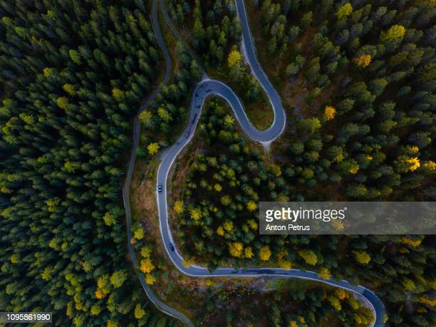 aerial landscape of winding road in the forest, serpentine view from drone - 散歩道 ストックフォトと画像